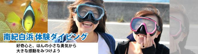 南紀白浜体験ダイビング
