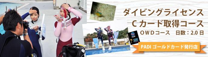 ダイビングライセンス(Cカード)取得コース OWDコース 2.0日【PADIゴールドカード発行店】