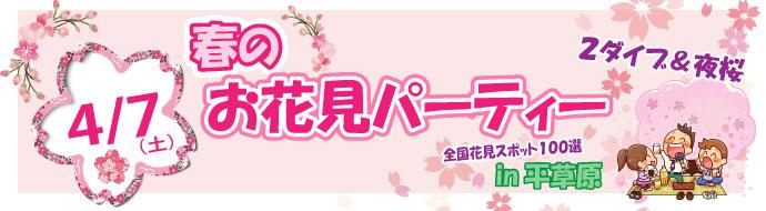 春のお花見パーティー(2ダイブ&夜桜)in平草原