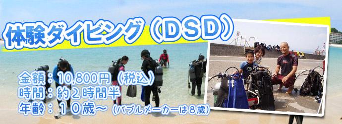 体験ダイビング(DSD)