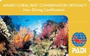AWAREサンゴ礁の保護スペシャルティ・コース