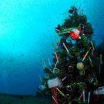 沈船にクリスマスツリーを設置